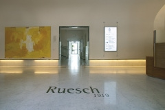 Ingresso Clinica Ruesch